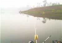 民间钓法抬线钓鲤鱼技巧分析