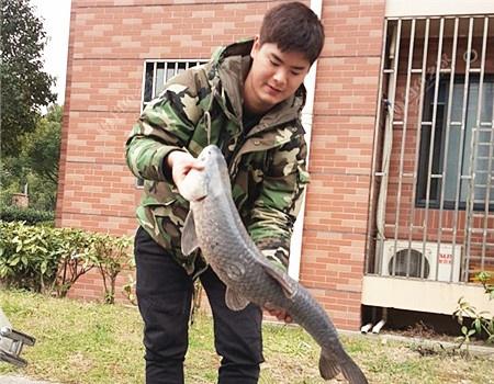米级青鱼腌制方法