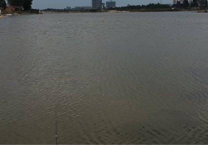 金沙湾沙坑