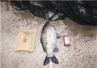 钓鱼小药添加剂的合理使用技巧