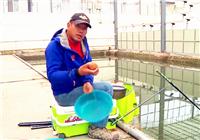 《坑冠之路》第33期 P哥分享釣魚餌料基礎調整方法(下)