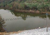 湿地公园坡切钓鱼场