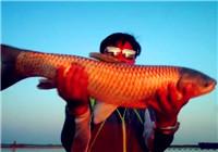 《渔道中国》88期 大结局-如果我们不曾相遇