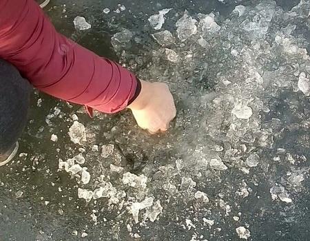 冬天钓鱼用蚯蚓一样魅力无限 蚯蚓饵料钓草鱼
