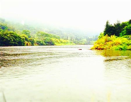 湖后遇雨,遇鱼 自制饵料钓罗非鱼