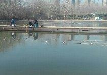 中牟梨园鱼塘