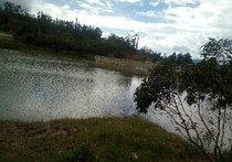 鱼水和垂钓园