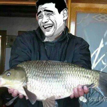 钓鱼我是认真迪