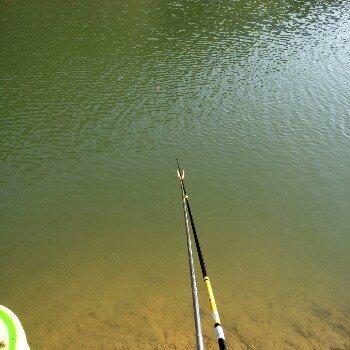 小Q钓鱼狂人