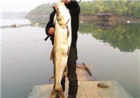 江河用海竿钓翘嘴鱼的心得分享
