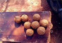 垂钓大个体鲤鱼常用的爆炸钩鱼饵