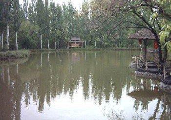 鱼米水乡垂钓园