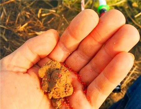 野钓第1战~~~~~~好多小鲫鱼。 红虫饵料钓鲫鱼