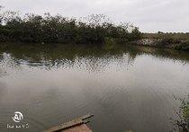 流溪河钓场