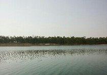 十二湖侧湖