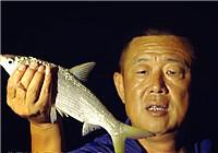 《游钓中国》第二季39集 大毛水库低水位探钓 夜钓收获黄鸭叫