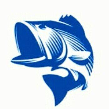 房东狂钓鲨