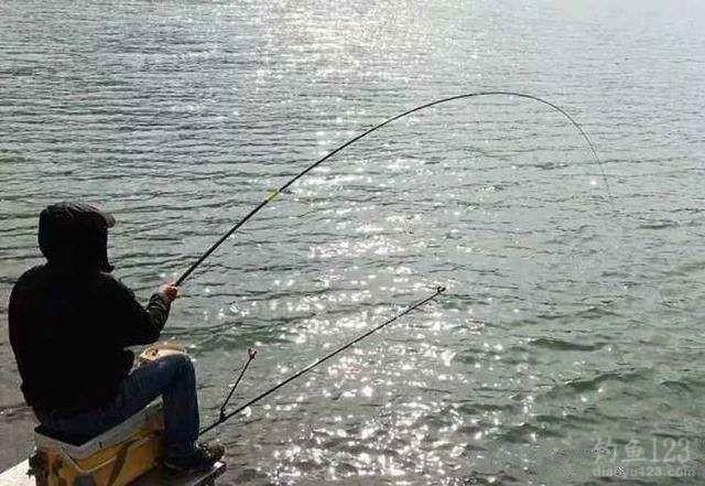 钓鱼与天气