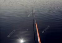 钓鱼人早春野钓必看选位与用饵技巧