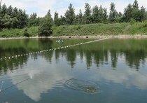 高城子鱼塘