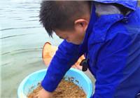 《我的7日江湖》第二季03期 万峰湖水位上涨 遭遇作钓大危机(下)