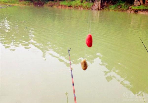 釣草魚餌料配方
