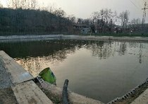 龙泉山庄垂钓园