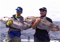 《海洋战士》20170323 澳大利亚帕斯探钓三斑甘友谊赛