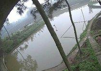 泸州石洞生态鱼塘天气预报