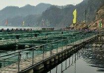 华美渔业垂钓乐园