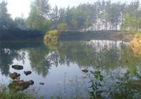 春釣青魚餌窩料與釣組的搭配技巧