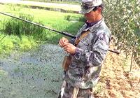 《三本先生》传统钓第61期 大蒲地边口选点截杀过往鲫鱼