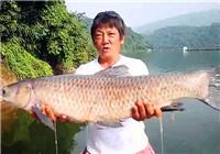 《高桥淡水行》第11集 高桥云南淡水行 励志钓获大青鱼