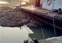 江河钓鱼你要学会的常识技巧