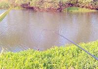 渔具技巧之不用浮漂如何钓大鱼