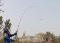 《钓鱼百科》 第十五集  什么是鱼竿的顶钓值?