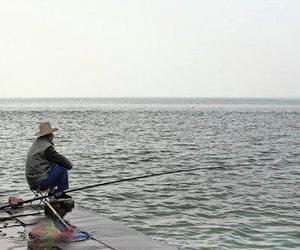 钓鱼达人都是风水行家 观风向凭温度找钓点!