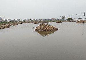 上海顶桢渔乐垂钓中心