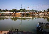 渔鹰生态垂钓基地