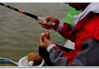 如何在競技釣中快速贏得比賽