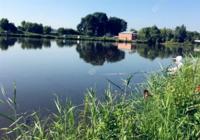 野钓技巧之关于水质钓位的选择