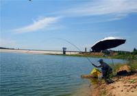 水库钓鱼时如何能钓到大鲤鱼