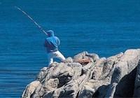 海钓技巧之钓泥猛鱼的渔具技巧