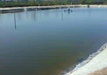 十里铺钓鱼园