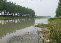渔沟镇东大河
