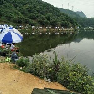 老艾大塘钓鱼场