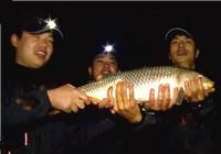 《我的7日江湖》第二季09期 老鬼队夜钓上巨鲤 无需饥饿忍受(上)