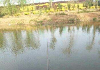 白鹤垂钓园