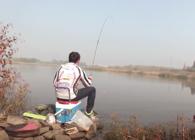 《麦子钓鱼》 这条野河的鲫鱼发疯了 和饵都来不及 !
