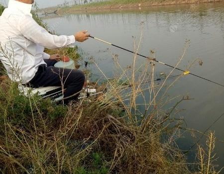 好久没钓了,今天去解解毒 钓鱼王饵料钓鳊鱼